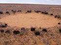 3sat 21:00: Namibia - Das Geheimnis der Feenkreise