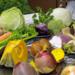 Bilder zur Sendung Kulinarische Winterreise - mit Meret Bissegger