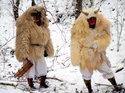 NDR 20:15: Expeditionen ins Tierreich