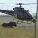 Bilder zur Sendung Am Kap der wilden Tiere