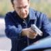 Bilder zur Sendung Alarm f�r Cobra 11 - Die Autobahnpolizei