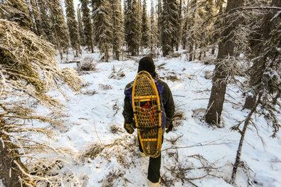 Mountain Men - �berleben in der Wildnis