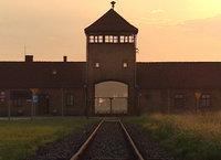 Der Tag in Auschwitz
