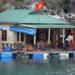 Bilder zur Sendung Die schwimmenden D�rfer der Halong-Bucht
