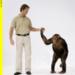 Bilder zur Sendung Mensch - Affe