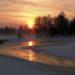 Bilder zur Sendung Der Nationalpark Belaweschskaja Puschtscha in Wei�russland