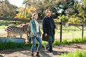 Matt Damon in: Wir kaufen einen Zoo