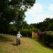 Bilder zur Sendung Ein Moped auf Reisen